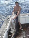 Near world record Dogtooth Tuna